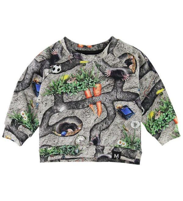 Molo Sweatshirt - Dag - Moles