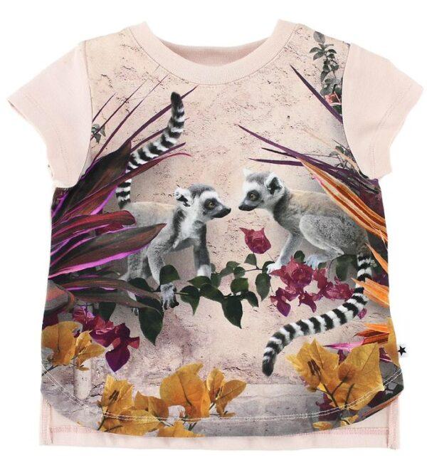 Molo T-shirt - Erin - Lemur